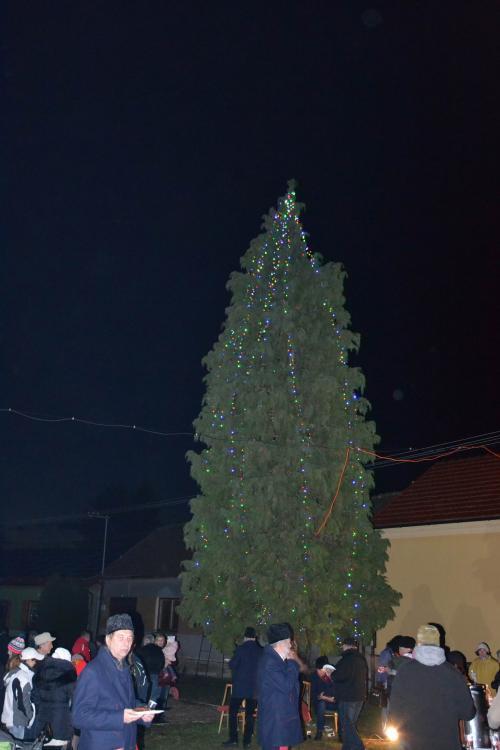 Zpívání u vánočního stromu - Jestřabice